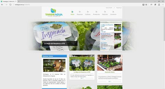 Imagen de VerdeAgua - Diseño Web